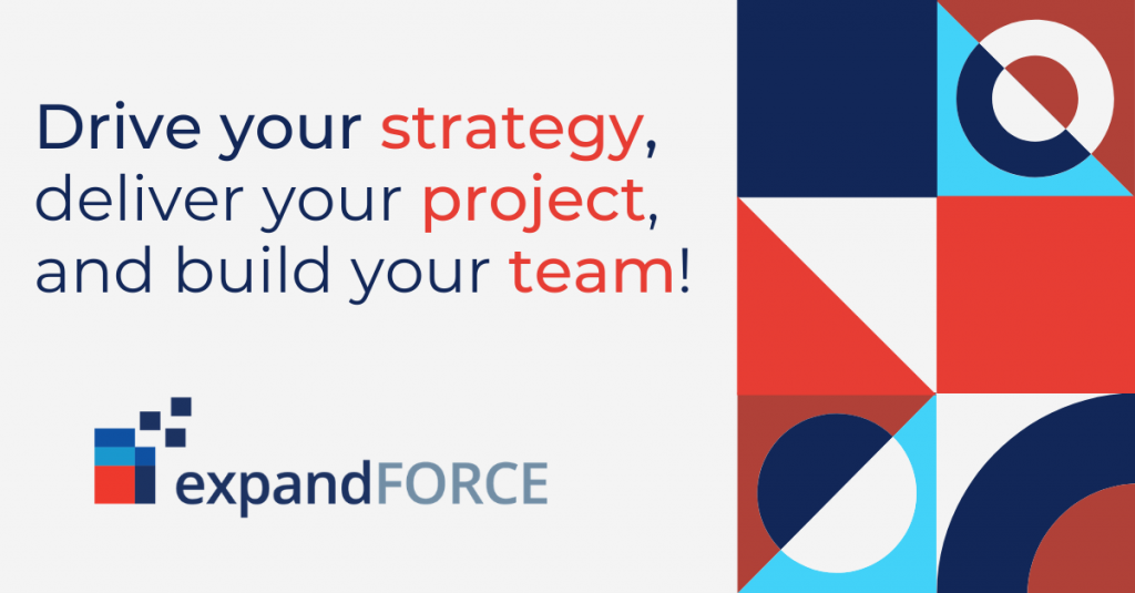Drive your strategy, deliver your project, and build your team!