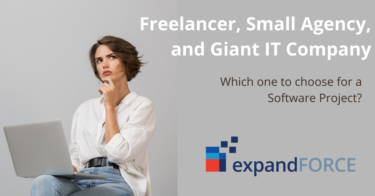 Things to consider while choosing from freelancer, small agency, and big IT company for your software project