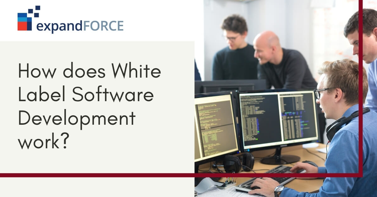 All About White Label Software Development Services