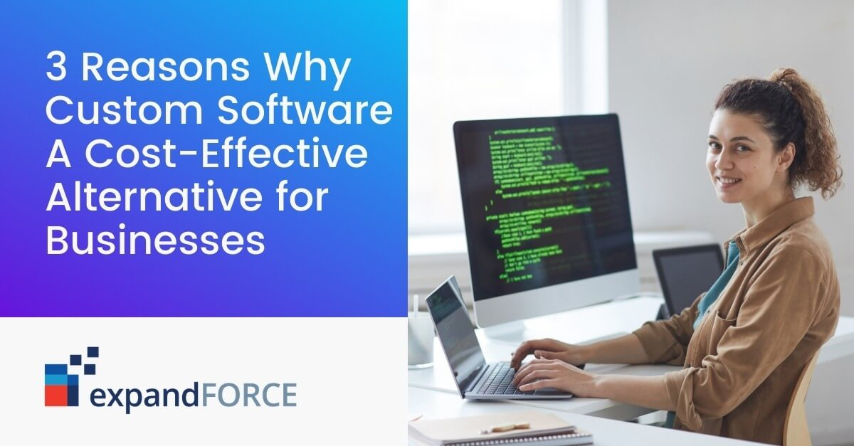 3 Reasons Why Custom Software Is A Cost-Effective Alternative for Businesses