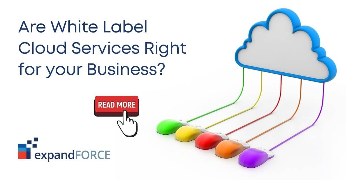 Are White Label Cloud Services Right for your Business? Find out with EF